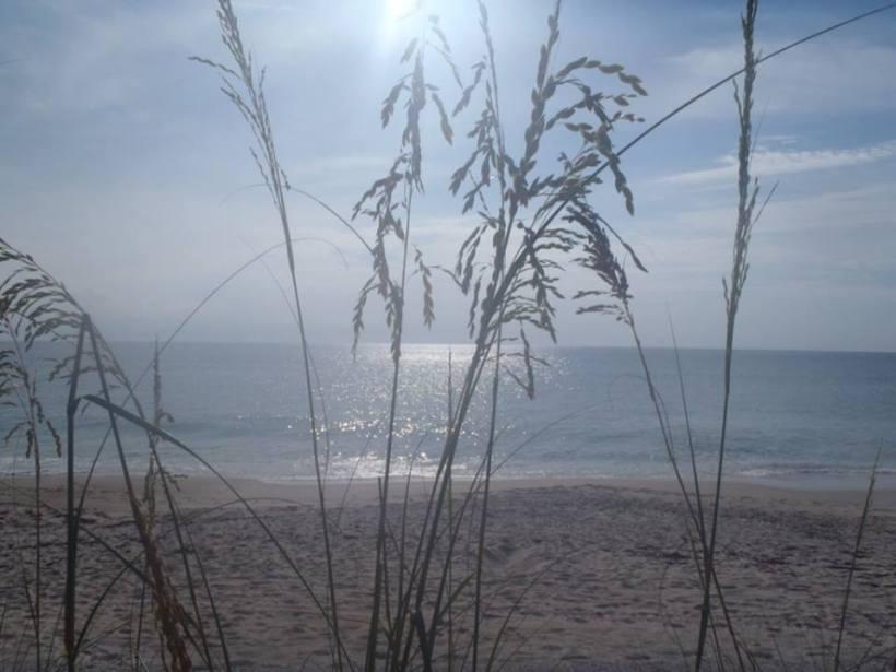 Lynn Johnson Calm Beach
